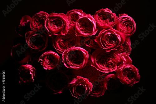 薔薇 Fototapeta