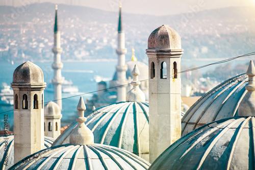 Wallpaper Mural The beautiful Süleymaniye mosque in Istanbul, Turkey