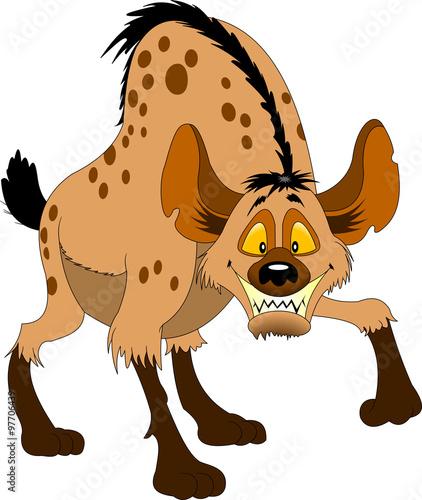 Fotografie, Obraz hyena