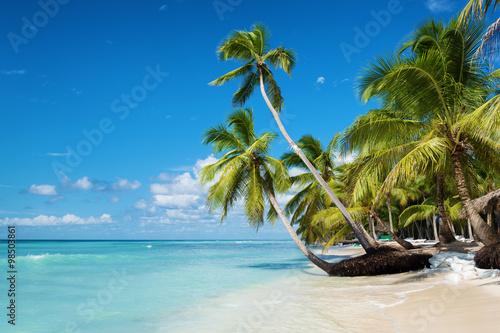 Strand in der Karibik Insel Saona, Dominikanische Republik Fototapete
