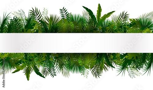 Photo Tropical foliage. Floral design background