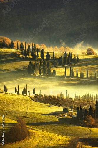 Fotografia Tuscany foggy morning, farmland and cypress trees. Italy.