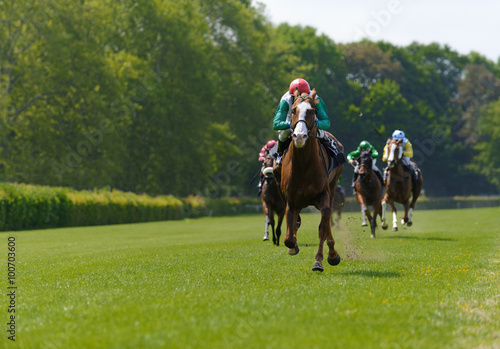Canvastavla Several racehorses with jockeys during a horse race