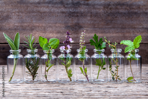 Bottle of essential oil with herbs holy basil flower, basil flow Fototapet