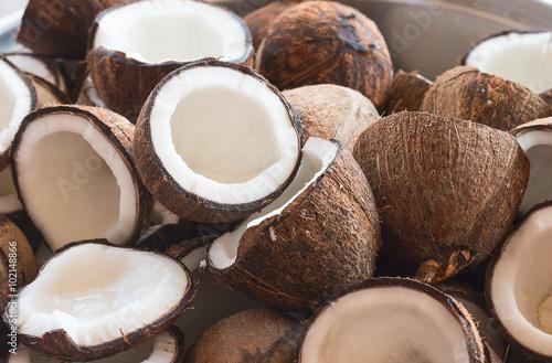 Coconut Fototapeta