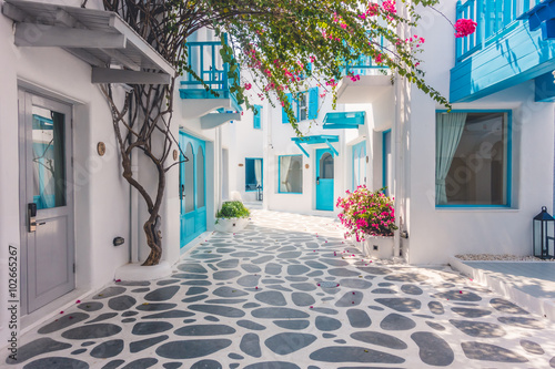 Canvas Print Beautiful architecture with santorini and greece style