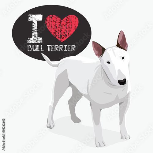 Wallpaper Mural I Love Bull Terrier
