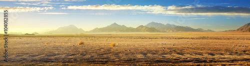 Billede på lærred View on desert