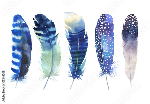 Fotografiet Hand drawn watercolor feather set
