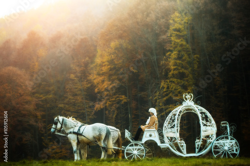 Fotografiet Vintage carriage in forest