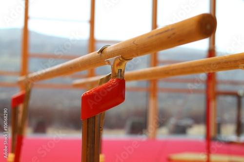 Fotografie, Obraz Gymnastické nářadí