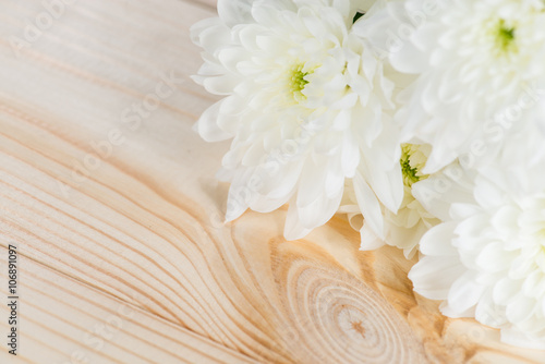 Canvas Print white chrysanthemum on a wooden background