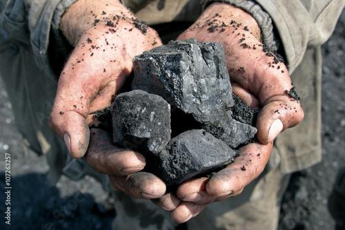 Wallpaper Mural coal miner in the hands of