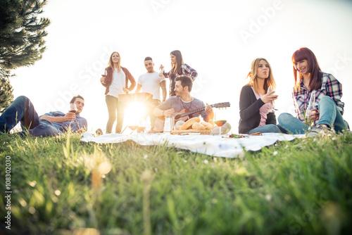 Stampa su Tela Friends having picnic