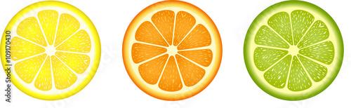 Foto Citrus fruit slices