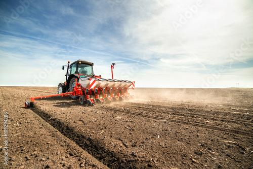 Canvas Print seeding crops at field