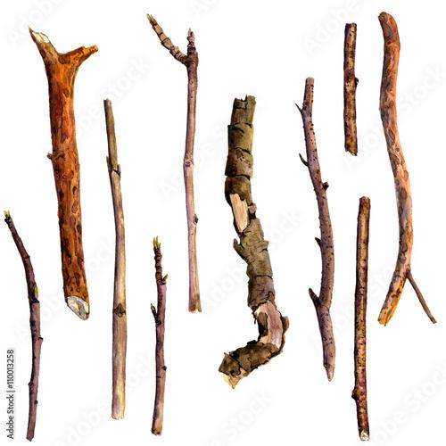 Wallpaper Mural watercolor wood twigs