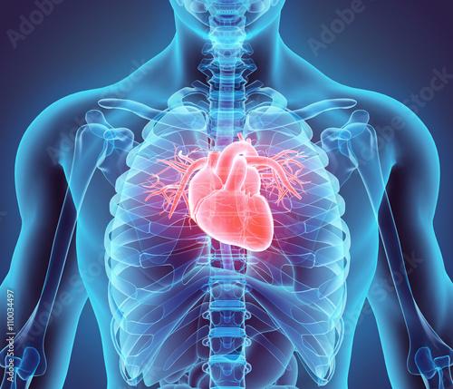 Canvas 3D illustration of Heart, medical concept.