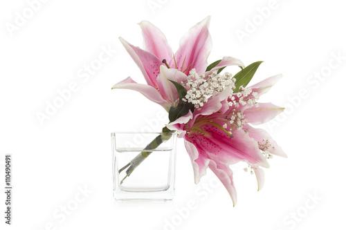 stargazer flowers Fototapet