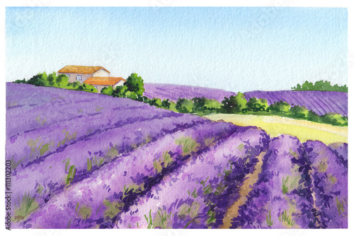 Fototapeta Lavender field with rural house in Provence, France. Watercolor