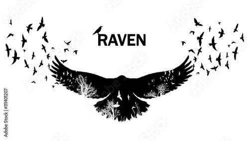 Canvas Print Flying raven double exposure.