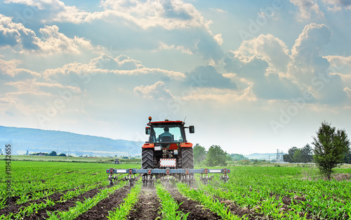 Canvas Print Tractor cultivating field at spring.