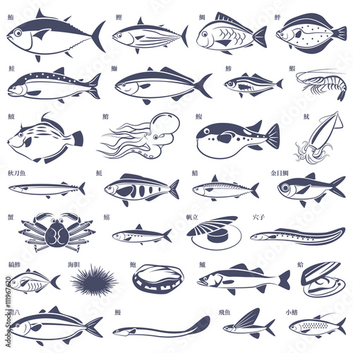 Fototapeta 魚いろいろ