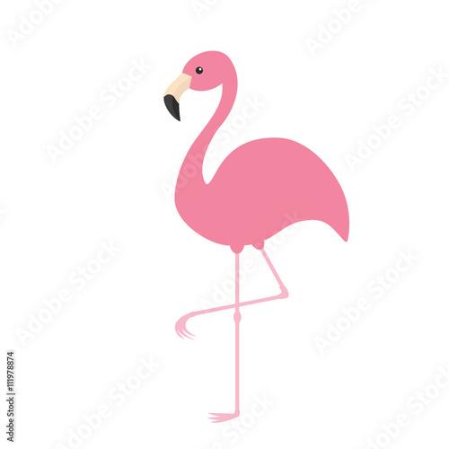 Valokuvatapetti Pink flamingo