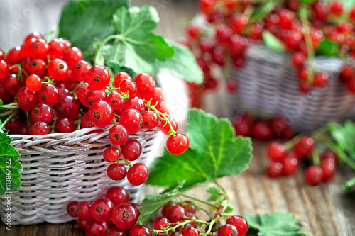 Canvas Print Organic red currant in wicker basket
