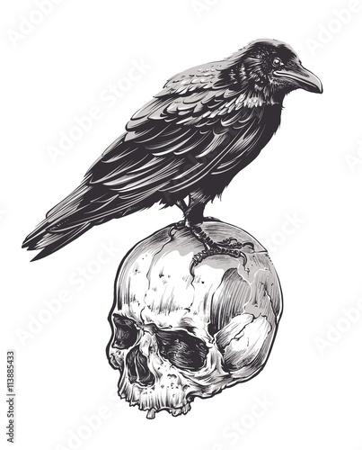 Wallpaper Mural Crow on Skull