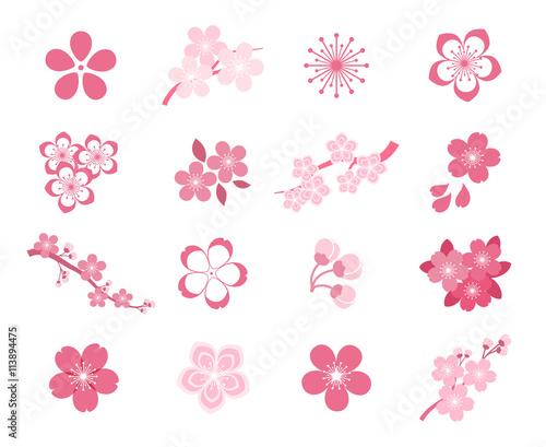 Valokuva Cherry blossom japanese sakura vector icon set