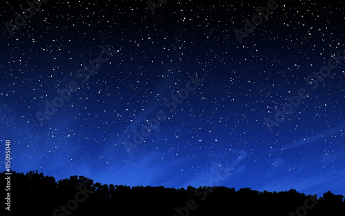 Deep night sky with many stars and forest