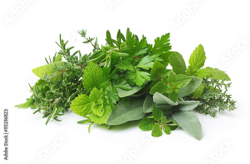 Fotografie, Tablou Fresh spices and herbs isolated