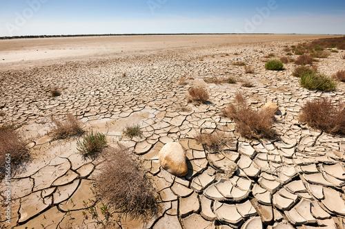 Slika na platnu arid and waste land