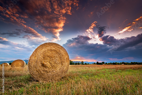 Valokuva Agricultural field with hay bales at sunset.