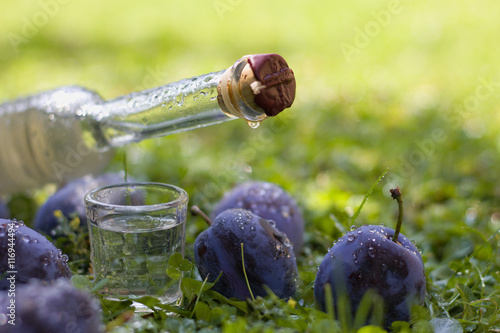 Obraz na plátne Plum brandy or schnapps with fresh and ripe plums