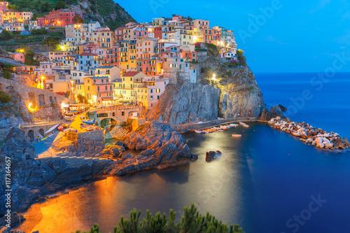 Stampa su Tela Aerial night view of Manarola fishing village, seascape in Five lands, Cinque Terre National Park, Liguria, Italy
