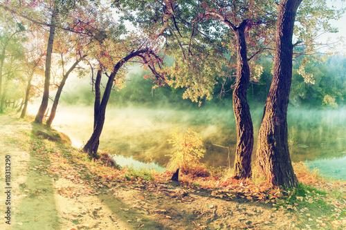 jesienny-krajobraz-w-stylu-vintage