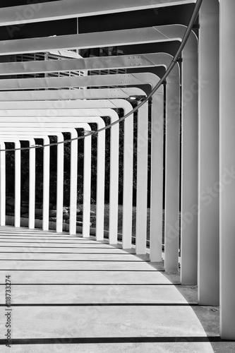 RBG Paviliion Geometry Vert