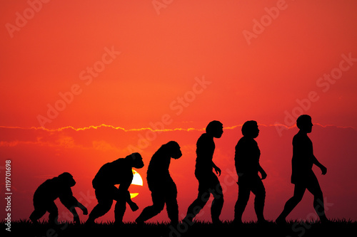 Fototapeta Human evolution