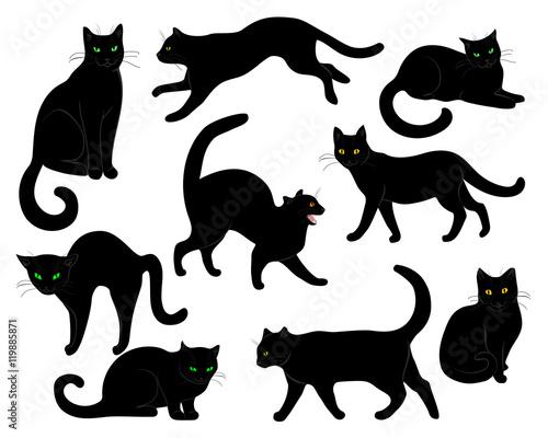 Carta da parati black cats set