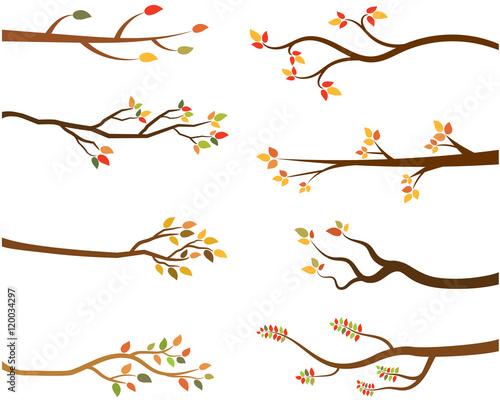 Fényképezés Autumn set of tree branch silhouettes