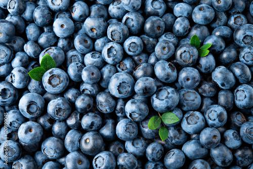 Fotografia Blueberry. Fresh organic berries macro. Fruit background