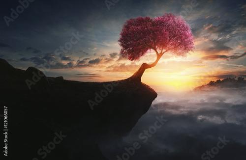 Slika na platnu Cherry tree on mountain