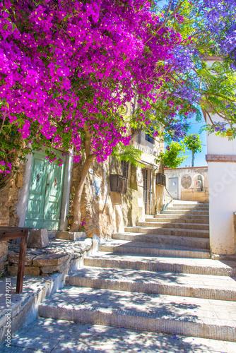Fototapeta premium Ulica z kwiatem Capoliveri wioska w Elba wyspie, Tuscany, Włochy, Europa.
