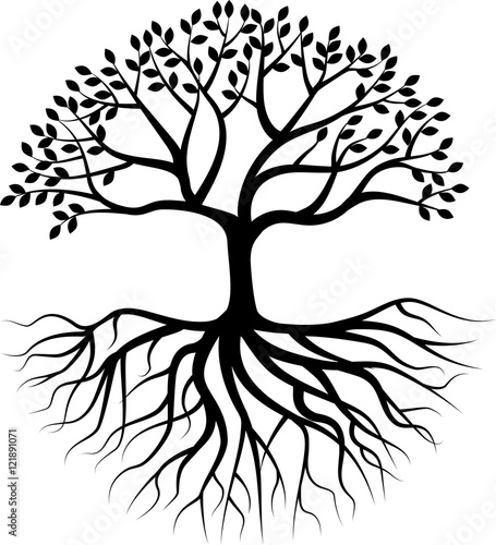 Wallpaper Mural Tree silhouette with root
