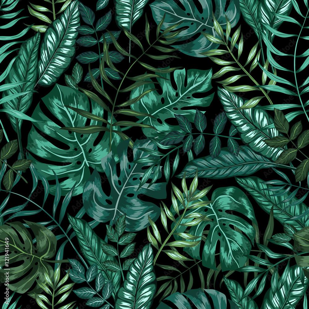 Fototapeta Nowoczesne liście monstera z ciemnym tłem