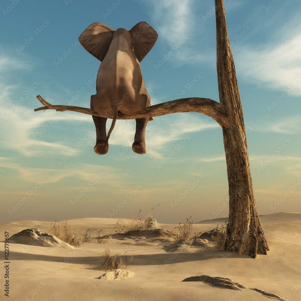 Elephant stands on thin branch of withered tree - obrazy, fototapety, plakaty