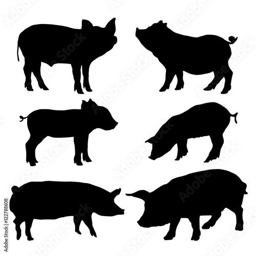 Wallpaper Mural Pig silhouettes set. Vector illustration