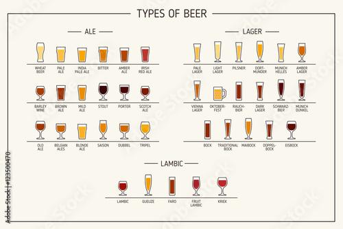 Types of beer Fototapeta